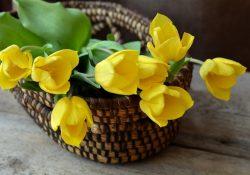 Lav en smuk og nem udsmykning i butikken med kunstige blomster
