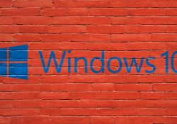 SoftwareNow - software uden abonnement
