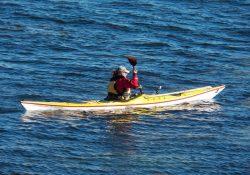 Er du vild med at være naturen? At sejle havkajak kan være den helt rigtige form for motion